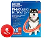 NexGard Spectra for Dogs 30-60kg - Flea, Tick & Worm Chewable Tablet - 6 Pack