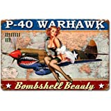 Jacksoney Tin Sign New Aluminum Military P-40 Warhawk Pin Up Girl Sign 11.8 x 7.8 Inch