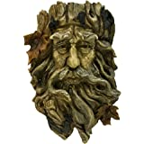 Bits and Pieces Old Man Tree Hanging Planter-Polyresin Sculpture Made to Look Like Wood - Suitable to Hang Indoors Or Outdoor