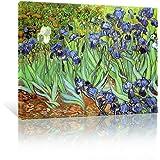 JAPO ART Abstract Giclee Wall Art Canvas Prints by Vincent Van Gogh, Irises, 16x12