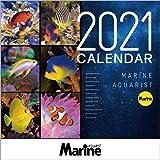 マリンアクアリスト 海水魚カレンダー 2021年 ([カレンダー])
