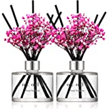 Cocod'or Preserved Real Flower Reed Diffuser, Rose Perfume Reed Diffuser, Reed Diffuser Set, Oil Diffuser & Reed Diffuser Sti