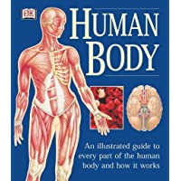 The Human Body: An Illustrated Guide to Every Part of the Hu…