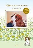 天使になったシュクちゃん 世界一愛された犬の七年半