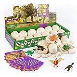 Touber Dinosaur Eggs Excavation, Dig a Dozen Dino Eggs Kit Dinosaur Eggs for 4-11 Year Olds Kids  for 5-12 Year Olds Boys Gir