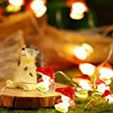 Mushroom String Lights, 10ft 30 LEDs String Lights, 8 Modes with Remote and Timer Control Function, Princess Fairy Lights for