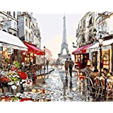 Paint by Numbers-DIY Digital Canvas Oil Painting Adults Kids Paint by Number Kits Home Decorations-Paris Flower Street 16 * 2