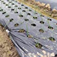 【メール便】 国華園 タマネギ用穴あきマルチ 4列45(0.95×10m) 1巻1組 マルチシート マルチング