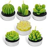 LA BELLEFÉE Candle Cactus Tealight Candles, Decorative Delicate Succulent Handmade Cute Mini Plants Candles - Home Decor/Birt