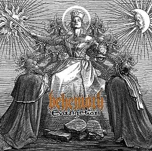 Evangelion (W/Dvd) (Dig)