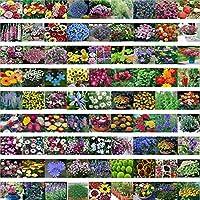 混ぜ200種子/パック春と秋の四季の花の種レフオフバンドルバッグ花の種