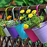 LOVOUS? 6.1 x 4.5 x 5.7 Large 3 PCS Iron Hanging Flower Pots Balcony Garden Plant Planter Wall Hanging Metal Bucket Flower Ho