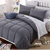 Duvet Comforter Warm and Anti Allergy All Season Quilt Duvet Bedding All Season Reversible (Double Size, Dark Gray/Light Gray