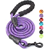 BAAPET 5 FT Strong Dog Leash with Comfortable Padded Handle and Highly Reflective Threads for Medium and Large Dogs (Purple)