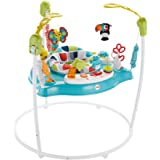 Fisher Price Colour Climbers Jumperoo