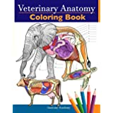 Veterinary Anatomy Coloring Book: Animals Physiology Self-Quiz Color Workbook for Studying and Relaxation | Perfect gift For