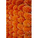 Krati Exports - 5 feet Marigold Garland (Dark Orange)