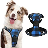 rabbitgoo Dog Harness No Pull, Adjustable Dog Walking Chest Harness with 2 Leash Clips, Comfort Padded Dog Vest Harness with