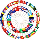 Anley Assorted 100 Different Countries Toothpick Flag - Vivid Double Sided Print & Solid Smooth Pick - Party Decoration Cockt