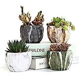 Sun-E Modern Style Marbling Ceramic Flower Pot Succulent/Cactus Planter Pots Container Bonsai Planters with Hole 3.35 Inch Pe