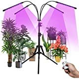 Grow Light for Indoor Plants, Plant Growing Lamps 4-Head 80 LED Full Spectrum Dimmable Plant Grow Light with Adjustable Tripo