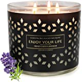 Scented Candles for Home Valentine's Day Gift for Women Jar Candle Aromatherapy Soy Wax 3 Wick 14.5oz 125 Hours Juniper and L