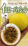 フタバ種苗 イエローパッション 種・小袋詰(1ml)