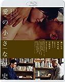 愛の小さな歴史 誰でもない恋人たちの風景 vol.1 [Blu-ray]