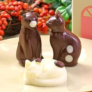 ねこ チョコレート 3個 セット お家の箱入り 猫 チョコ 個包装 お菓子