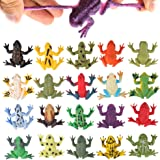 Frog Toys12 Pack Mini Rubber Frog setsFood Grade Material TPR Super StretchesWith Gift Bag And Learning Study CardValeforToy
