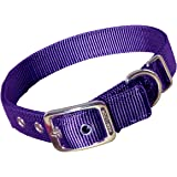 Hamilton Double Thick Nylon Deluxe Dog Collar, 1-Inch by 22-Inch, Purple