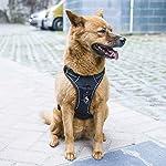 PUREBOX Dog Harness Vest No Pull Reflective Dog Pet Walking Harness Adjustable Padded Vest Comfort Control for Dogs