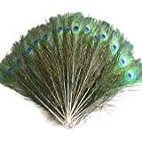 20Pcs Real Natural Peacock Feather for Home Wedding Decoration House Decoration