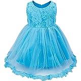 FEESHOW Baby Girls' Lace Flower Princess Wedding Party Pageant Birthday Tutu Dress