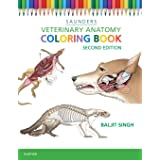 Veterinary Anatomy Coloring Book (Revised)