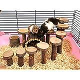 ハムスター おもちゃ はしご 小さなペット用階段 小動物 遊び場 玩具 運動不足解消 鳥・オウム・チンチラ・スナネズミな…