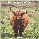Scottish Highland Cow 2021 Wall Calendar: Official Highland Cow Wall Calendar 2021