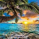 KIAJ 油絵 数字キットによる絵画 塗り絵 大人 手塗り DIY絵 デジタル油絵 40x50cm ハワイに沈む夕日 (フレームレス)