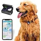 PetFon ペットGPSトラッカー 首輪 月間料金なし リアルタイム追跡 アプリコントロール 犬 ペット アクティビティモニター用(Only Dog)