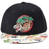 Boys'Dinosaur Baseball Hat Kids Youth Snapback Cap Black