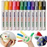 SAYEEC Acrylic Paint Marker Pens Set of 12 Reversible Tip Colored Artist Gold Marker Coloring Pen for Rock Painting Mug Desig