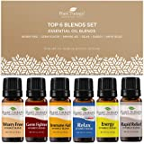 Plant Therapy Essential Oils Top 6 Blends Set 100% Pure, Undiluted