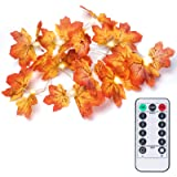 OMGAI Fall Maple Leaf String Light with Remote Control Timer, Waterproof Thanksgiving Decorations Battery Powered Lighted Gar
