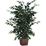 Vickerman Everyday 4' Artificial Ficus Bush Potted in a Square Willow Basket - Lifelike Home Office Decor - Faux Indoor Potte