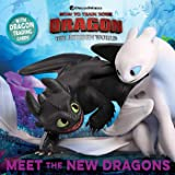 Meet the New Dragons