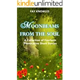 MOONBEAMS FROM THE SOUL: A Collection of Fourteen Provocative Short Stories