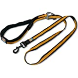 Kurgo 6-in-1 Quantum Hands Free Dog Leash for Walking, Running or Hiking with Adjustable Waist Belt, Barn Red
