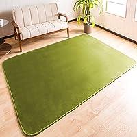 システムK カーペット ラグ ラグマット 防ダニ 抗菌 防臭 洗える 選べる14色 ふわふわ肌触り グリーン 130×1…