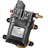 bayite 12V DC Fresh Water Pump 7.5 L/Min 2 GPM 100 PSI Adjustable 12 Volt Diaphragm Pump Self Priming Sprayer Pump with Press