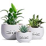 Koolkatkoo Cute Cat Flower Pot Cactus Succulent Plant Pots Ceramic Planters White Set of 3